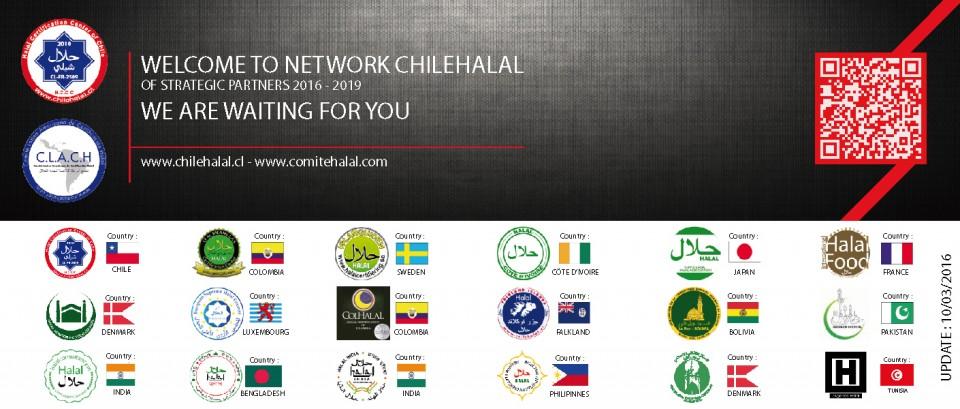 NEWSPARTNERS-CHILEHALAL-120